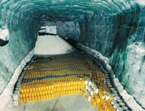 H. R. 2699, Nuclear Waste Policy Amendments Act of 2019.