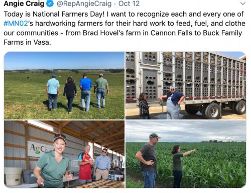 Brad Hovel Farm in Cannon Falls